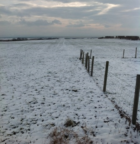 farm_in_snow2